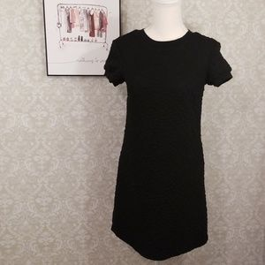 Zara Woman Black Sweatshirt Dress